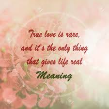 Flower Love Quotes Meaningful Quote On Pink Flower Background True Love Is Rare 90