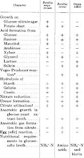 Table 2 From A Glutamic Acid Producing Bacillus Semantic