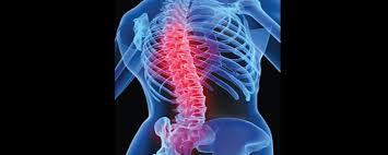 Image result for जोड़ों और हड्डियों में दर्द