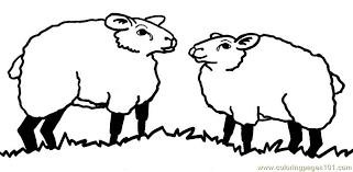 Small Picture Two sheep Coloring Page Free Sheep Coloring Pages