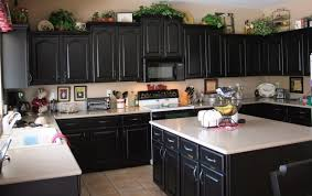 kitchens with black cabinets. Black Kitchen Cabinets Houzz Nrtradiantcom For Kitchens With