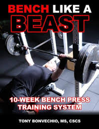 Muscle Palace How To Increase Your Bench Press  Build A Bigger Increase Bench Press Routine