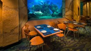 Image Seaworld All Photos 1283 Tripadvisor Coral Reef Restaurant Orlando Restaurant Reviews Phone Number