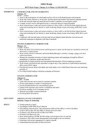 Job Resume Online Online Coordinator Resume Samples Velvet Jobs