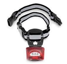 com puplight2 twice as bright with reflective dog safety collar silver pet collars pet supplies