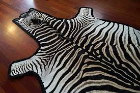 zebra skin rug incredible felted grade a outsourcesol llc pertaining to 4
