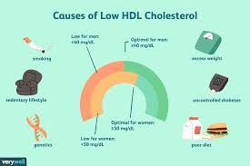 High Cholesterol Levels Chart Uk What Causes Low Hdl Cholesterol Levels