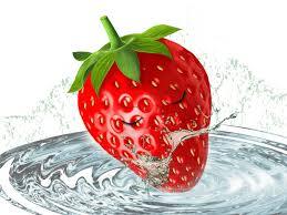 fruit articles