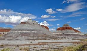 Petrified Forest National Park - Wikipedia