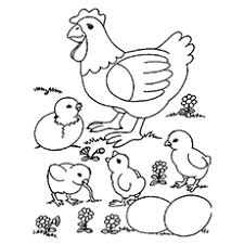 Small Picture Top 10 Free Printable Cute Chicks Coloring Pages Online