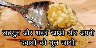 Image result for लहसुन को खाने सही तारिके