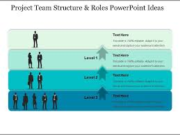 Project Powerpoint Project Team Structure And Roles Powerpoint Ideas