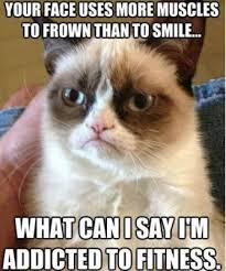 best-funniest-grumpy-cat-6.jpg via Relatably.com