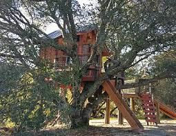 treehouses for kids. Coolest Kids Treehouse Ever Treehouses For