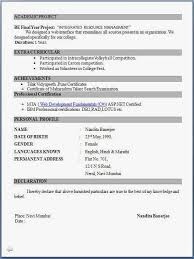 Resume Forms Online Magnificent Resume Format Pdf For Freshers Latest Professional Resume Formats In