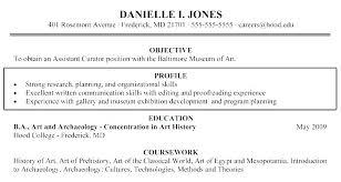 Art History Resumes Resume Profile Samples Resume Profile Examples Entry Level Sample