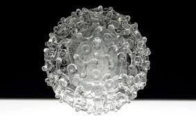 Bluetounge Virus Bluetongue Virus Glass Microbiology Luke Jerram
