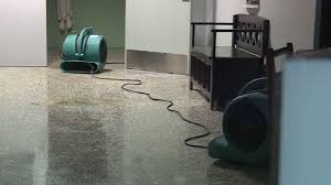 St. Kevin School cleaning up after substantial water damage Water Damage  Restoration Chicago https://www.thecleanup… | School clean, Flood  restoration, Water damage