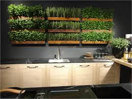 Brilliant Kitchen Vertical Garden Make Your Own Kitchen Micro Garden  Attaching The Planters To