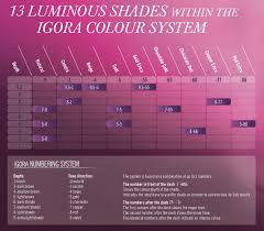 Igora Viviance Color Chart Schwarzkopf Color Chart 7 0 New