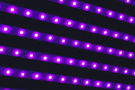 Horticultural Lighting Uk Led Grow Lights Or Is It L E D Grow Lights The Facts