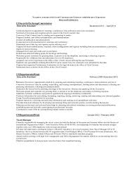 executive format resume example of executive resume
