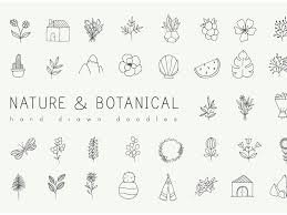 Free Download Clipart Hand Drawn Nature Plants Doodles Free Download By