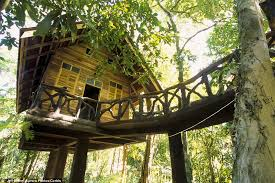 Treehouse At A Jungle Resort In Khon Kaen Thailand Stock Photo Treehouse In Thailand