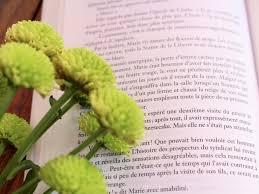 Mes Citations Littéraires Préférées 2 Lt
