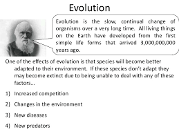 summary of topic biodiversity in ecosystems evolution