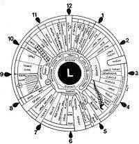 Dr Bernard Jensen Iridology Chart Iridology Wikipedia