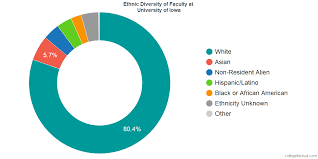 University Of Iowa Diversity Racial Demographics Other Stats