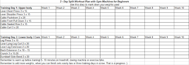 2 day split workout plan with gym machines for beginners