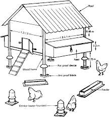 Chapter 1 - Egg production