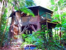 Daintree Accommodation  Rainforest Treehouse Accommodation In Treehouse Accommodation