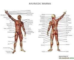 Marma Chart Varma Kalai The Esoteric Martial And Healing Art From
