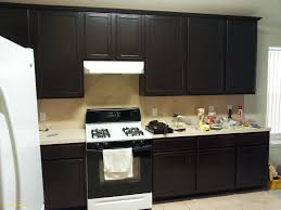 Kitchen How To Stain Kitchen Cabinets Without Sanding Design Ideas