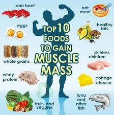 Best Workout Routine Diet Plan For Muscle Gain