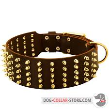 extra wide leather dog collar with 5 rows of spikes
