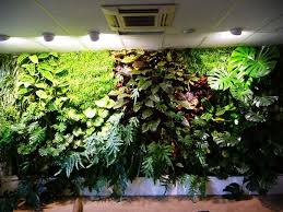 popular fake artificial green wall with lush plastic plants for interior wall decoration of ec91146694 on green wall fake plants with popular fake artificial green wall with lush plastic plants for