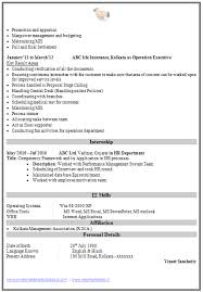 mis executive sample resume