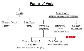 form of be verb relt forms of verbs