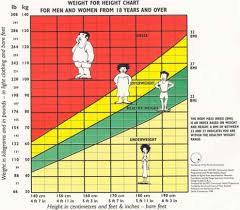 Body Mass Index Chart For Kids Deanza College Cis2 Summer 2010 Group 3 Wikieducator