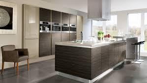 Useful Items Double As Decor In This Modern Kitchen  Avi Modern Interior Kitchen Design