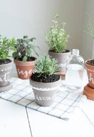 Cute Herb Garden Pot Ideas