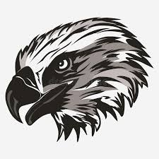 bald eagle template eagle head logo vector stock vector illustration of cartoon 84557732