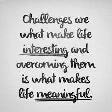Life Challenges Quotes Extraordinary Challenge Quotes Life Quotes Humor