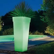 Vasi per piante da interno moderni: bigarrÅ vaso con sottovaso