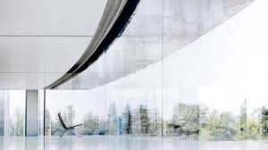 apple staff repeatedly walk into glass walls at foster designed campus claim sources