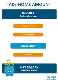 Use Our Dutch Payroll Calculator To Check Your Take Home Amount